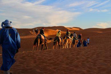Kralovstvi-plne-arganii-navsteva-mesta-Agadir